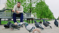 Middle-aged man feeding pigeons in the park Stock Footage
