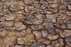 Drought, mud cracks in dry cultivated land Stock Photos