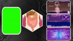 Vector Digestion - Three Monitor Scanning Info - Green Screen - purple 01 - stock footage