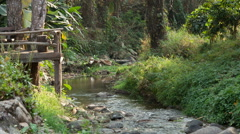 River flows thru the jungle Stock Footage