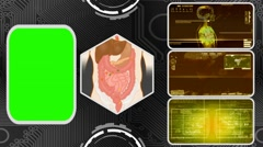 Vector Digestion - Three Monitor Scanning Info - Green Screen - yellow 03 - stock footage