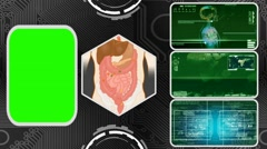 Vector Digestion - Three Monitor Scanning Info - Green Screen - green 03 - stock footage