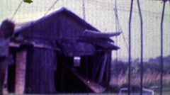 1968: Boy swings hard in family playground with old barn in background. Stock Footage