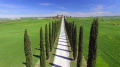 Cypress trees in tuscan hills - stock footage