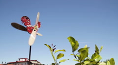 Cockerel colorful wooden weathervane yellow and red with wings that run Stock Footage