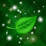 Spring Green Leaf - stock illustration
