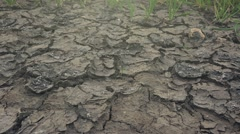 Dolly slider shot of soil drought, cracks in dry land Stock Footage