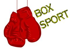 Boxing gloves Stock Illustration