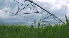 Dolly slider shot of wheat field and irrigation sprinkler - stock footage
