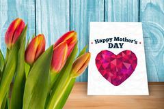 Composite image of tulip Stock Photos