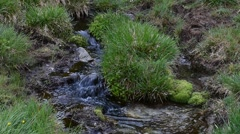 Flowing water of babbling brook Stock Footage