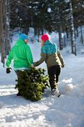 Couple dragging christmas tree through snow Stock Photos