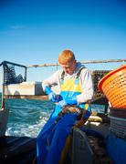 Fisherman holding lobster on boat - stock photo