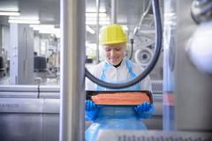 Worker inspecting salmon fillet in food factory, smiling Stock Photos