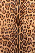 Faux leopard fur Stock Photos