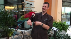 Man with Parrot in hotel lobby Stock Footage