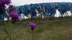 Purple Flowers on the Background of Multiple Layers of Blue Cloth on the Fence Stock Footage