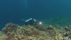 Diver on a coral reef with a Hawksbill Turtle. 4k Stock Footage