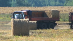 Tractor Loading Big Roll Harvested Straw. Work in the Field Stock Footage