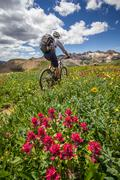 Mountain biker on green trail - stock photo