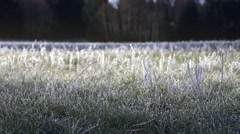 Morning Light Melting the Frosted Grass Stock Footage