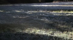 Streams of Morning Light Melt the Frosted Grass Stock Footage