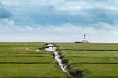 Field with distant lighthouse, Schleswig Holstein, Germany Stock Photos