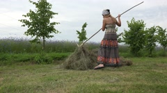 Woman rake hay throughout the day and tired plunk in stook. 4K Stock Footage