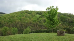 tree on a hill with well - stock footage