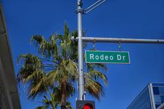 Rodeo Drive sign on traffic signal Kuvituskuvat