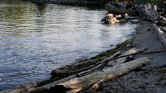 The rocky shoreline of the Vancouver downtown skyline and waterfront. Stock Footage