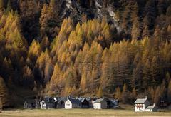 Forest village in Alp Devero, Alpi, Piedmont, Italy Stock Photos