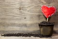 Dry tea leaves for black tea and red heart love on wooden background. Space f Stock Photos