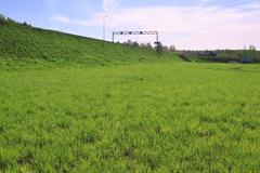 Fresh bright green lawn and road on hill at summer sunny day Stock Photos