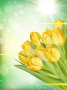 Bouquet of yellow tulips. EPS 10 - stock illustration