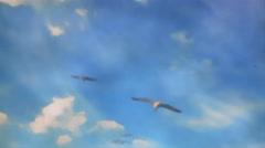 Seagulls Fly in Sky Cartoon Animation - 29,97FPS NTSC Stock Footage