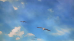 Seagulls Fly in Sky Cartoon Animation - 25FPS PAL Stock Footage