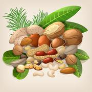 Nut collection with raw food mix. Vector illustration - stock illustration