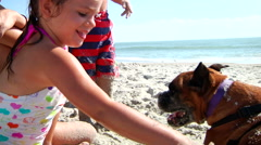 Kids Playing With Boxer Dog On Beach Stock Footage