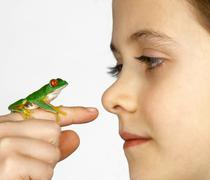 Girl with a red-eyed tree frog on her finger Stock Photos