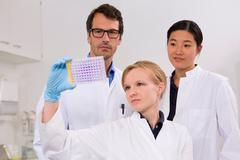 Group of scientists analyzing microtiter plate with crystal violet solution Stock Photos