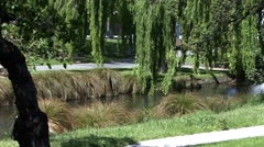 River in Christchurch New Zealand Stock Footage