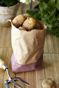 Raw potatoes in brown paper bag Stock Photos
