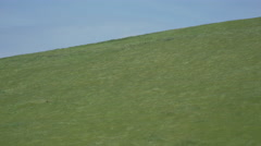 Green grass on a hill in a Californian wind farm Stock Footage