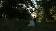 Lovely wedding couple softly kissing in a green summer forest - stock footage