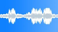 Revving a car engine (recording) - sound effect