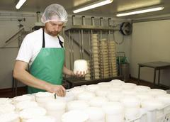 Cheesemaker holding moulded curds at farm factory Stock Photos