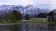 Flock Of Seagulls Fly Above Pond In Park, Mountains In Background Stock Footage