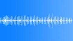 Wind up toy Sound Effect