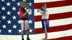 Political parties ready to spar against American Flag - stock footage